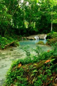 A visit to Blue Hole near Ochi is one of the best things to do in Ocho Rios because this unspoiled natural emerald lagoon with pristine waterfall and beautiful surroundings is also an ideal spot for swimming.