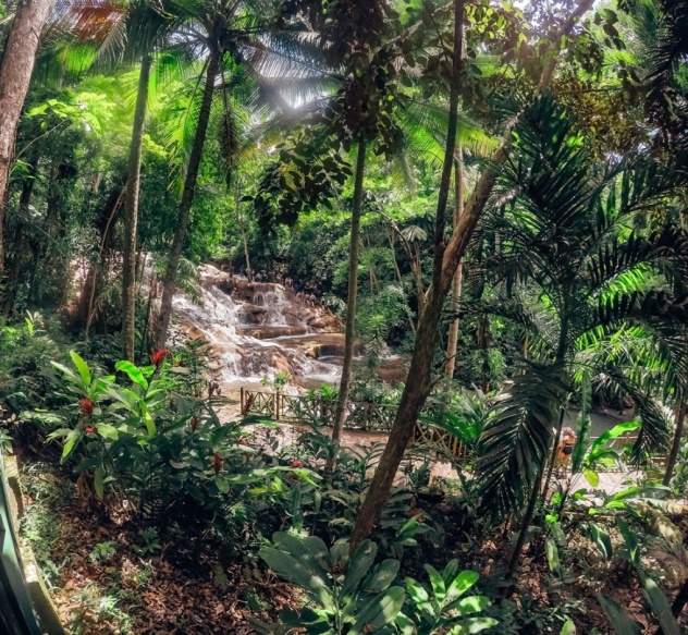 Dunns River Falls is one of the best things to see in Ocho Rios in Jamaica because it is the world famous waterfalls. The travertine waterfalls are natural wonders of the Caribbean because they empty to the sea.