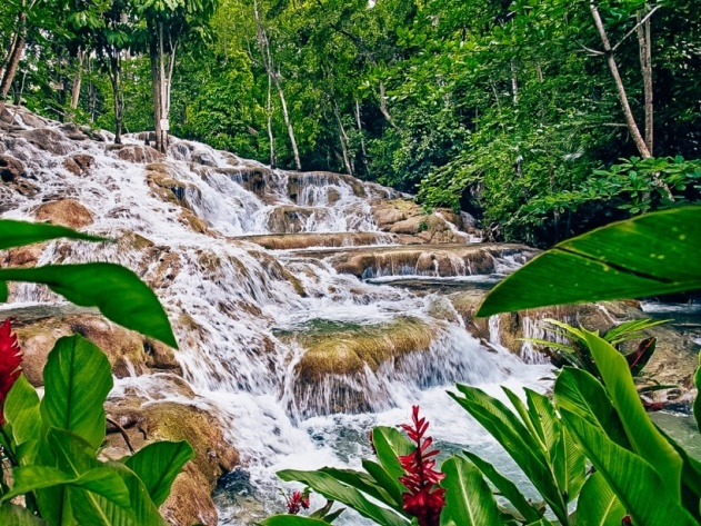 Spectacular Dunns River waterfall is a unique attracion in Ocho Rios in Jamaica because it is continuously rebuilt by the sediments in spring water.