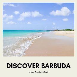 discover Barbuda island in the Caribbean
