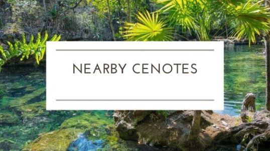 nearby cenotes