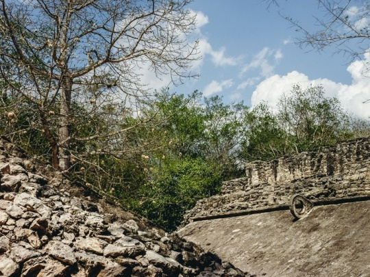 "Coba`s Maya ball court: Two well-preserved ball courts in the Maya Coba were used for playing the ancient ritualistic ball game ""Juego de Pelota (Pok-A-Tok in Maya language). The ball courts remain in relatively good shape, despite their 1,500 years old age."