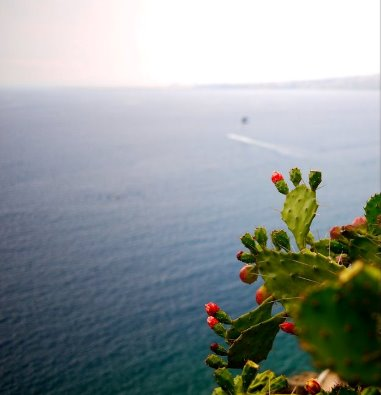 things to do in Nice in France: Take the Nice coastal walk from Nice to the nearby town of Villefranche Sur Mer. A pleasant coastal walk with dramatic views of the Côte d'Azur is a great way how to spend a day in Nice, France.