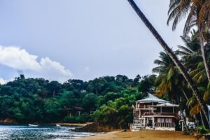 Castara views: A small fishing village located up north on the west side of the island is an ideal place to spend some time relaxing. An unspoiled bay with numerous coconut palm trees, fishing boats, and calm waters with a reef quite close to the shore has a laid-back feel.