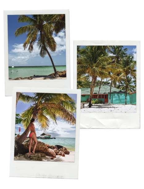 Tobago bucket list locations: discover Tobago`s top attractions in our guide to the island