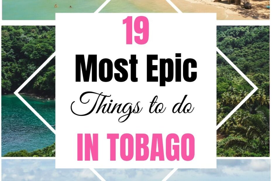Wandering what things to see and do in Tobago island? Uncover 19 most epic things to do in Tobago and spend a perfect escape on this beautiful island.