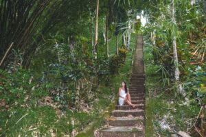 Pirate`s bay stairs from Charlotteville allow you to access one of the most beautiful bays on the island. It takes a little effort to access it, but it is definitely worth it.