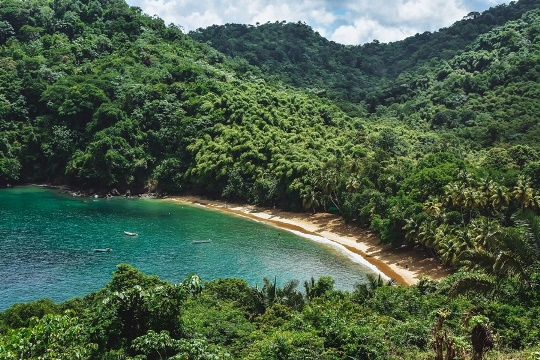 Englishman`s Bay Tobago: Tucked away between the sleepy fishing village of Castara and Parlatuvier, Englishman`s bay is one of Tobago`s real jewels. A beautiful horseshoe of yellow sand that lies on the edge of the untouched rainforest, Englishman`s bay is not well known to many tourists. With its green-blue water and lots of coconut and palm trees, it`s no wonder Englishman`s bay offers extraordinary views all year round.