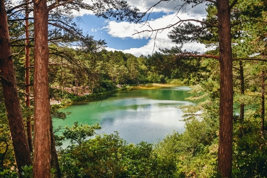 unique things to do in Dorset: A visit to Blue Pool Dorset is one of the best unique things to do in Dorset because this beautiful lake constantly varies in colour. What`s more, Blue Pool is a home to Britain`s endangered and protected reptiles.