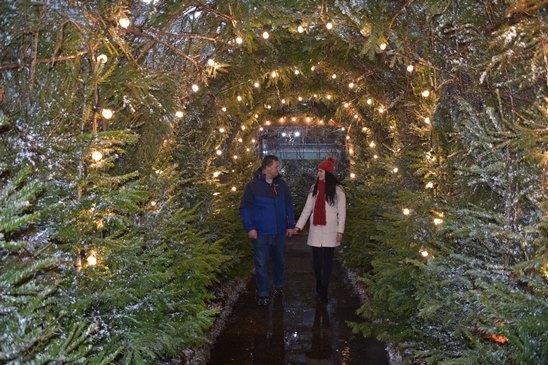 Magical London Christmas