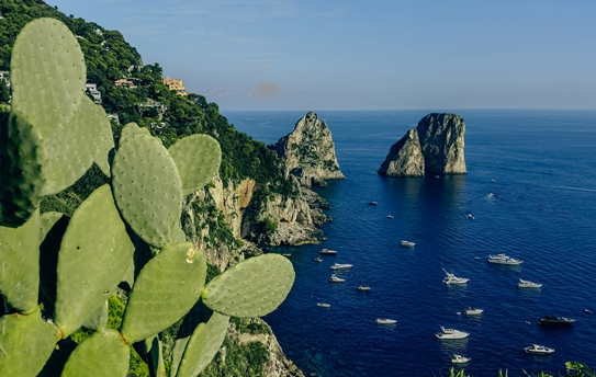 things to do in Capri: Just a short walk from the heart of the town brings you to the Capri`s botanical gardens. The beautifully maintained gardens, founded by Emperor Augustus, overlook some of the island`s most famous attractions. Therefore, the terraced Gardens of Augustus are one of the best things to see in Capri.