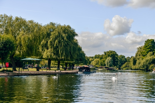 things to do in Stratford-upon-Avon: It is perhaps no surprise to say that walking Stratford's riverside is a must when visiting this lovely town. Walk along the promenade, and you will have a chance to spot the local wildlife.