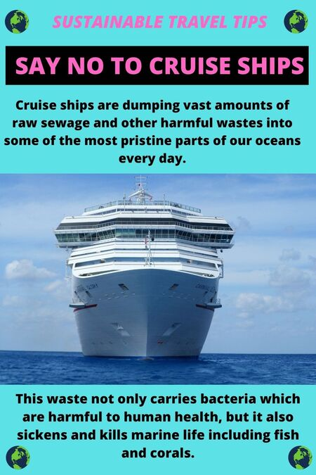 Sustainable travel tip: avoid cruise ships because they have devastating effects on the environment. What's more, they contribute less to the local economy than tourists staying at hotels.