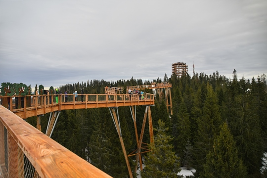 Tatra Mounains: Treetop walk Bachledka is a popular tourist attraction in the Tatra Mountains, because it offers scenic views of the mountains.