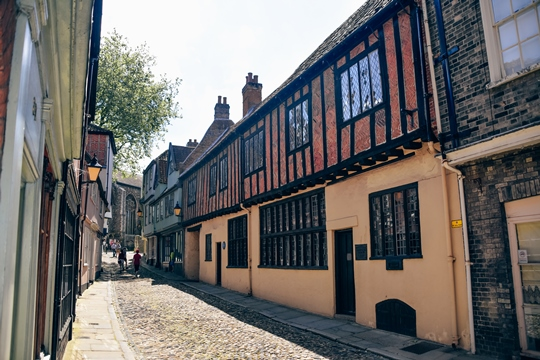 things to do in Norwich: Exploring Elm Hill is one of the top things to do in Norwich because Elm Hill is the most famous street in the city. What makes Elm Hill unique is that Elm Hill is one of the best-preserved medieval streets in England. This beautiful cobbled street has a medieval architecture with Tudor buildings and cute little shops.