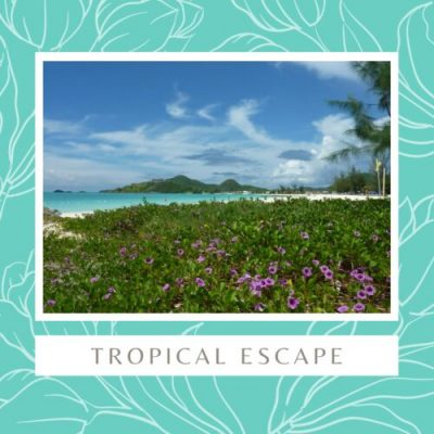 Tropical Escape Banner